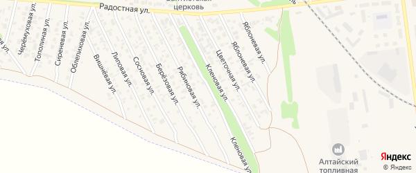 Кленовая улица на карте Камня-на-Оби с номерами домов