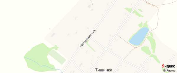 Молодежная улица на карте села Тишинки с номерами домов