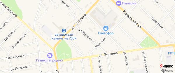 Улица Тургенева на карте Камня-на-Оби с номерами домов