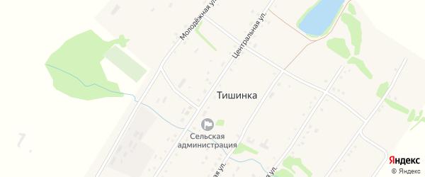 Центральная улица на карте села Тишинки с номерами домов