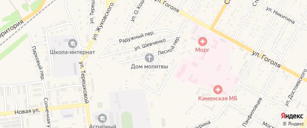 Снежный переулок на карте Камня-на-Оби с номерами домов