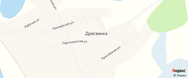 Партизанская улица на карте села Дресвянки с номерами домов