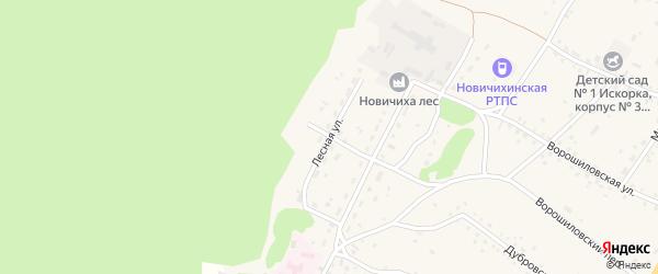 Лесная улица на карте села Новичихи с номерами домов