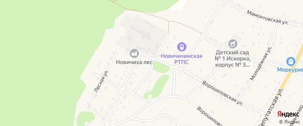 Сибирская улица на карте села Новичихи с номерами домов