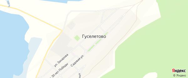 Карта села Гуселетово в Алтайском крае с улицами и номерами домов
