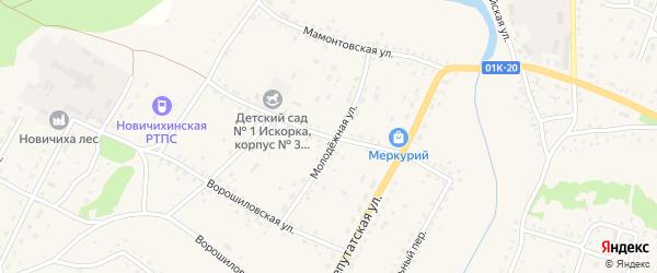 Школьная улица на карте села Новичихи с номерами домов