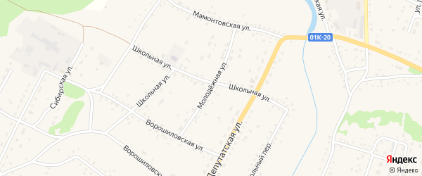 Молодежная улица на карте села Новичихи с номерами домов