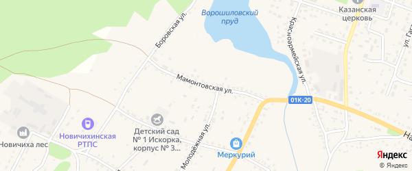 Мамонтовская улица на карте села Новичихи с номерами домов