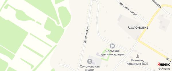 Целинная улица на карте села Солоновки с номерами домов