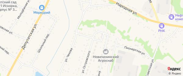Улица Мичурина на карте села Новичихи с номерами домов