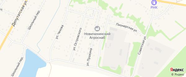 Улица Пушкина на карте села Новичихи с номерами домов