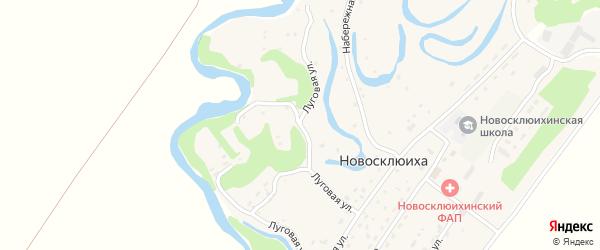 Луговая улица на карте села Новосклюихи с номерами домов
