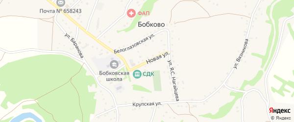 Новая улица на карте села Бобково с номерами домов