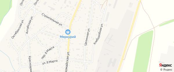Целинная улица на карте села Новичихи с номерами домов