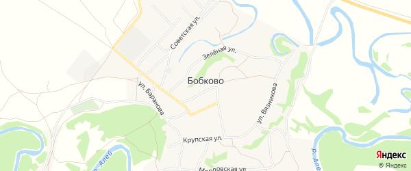Карта села Бобково в Алтайском крае с улицами и номерами домов
