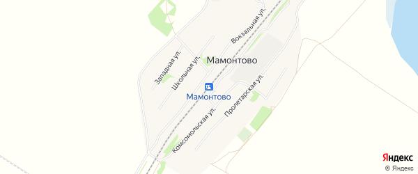 Карта станции Мамонтово в Алтайском крае с улицами и номерами домов
