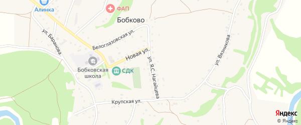 Улица им Я.С.Нагайцева на карте села Бобково с номерами домов
