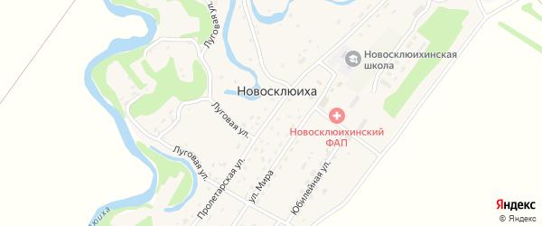 Пролетарская улица на карте села Новосклюихи с номерами домов