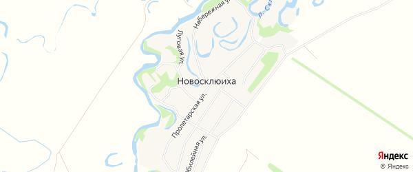 Карта села Новосклюихи в Алтайском крае с улицами и номерами домов
