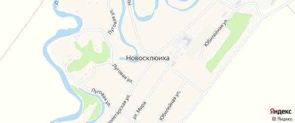 Юбилейная улица на карте села Новосклюихи с номерами домов