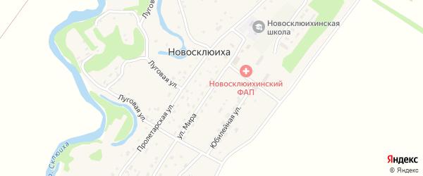 Улица Мира на карте села Новосклюихи с номерами домов