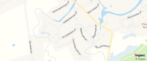 Островная улица на карте села Вылково с номерами домов