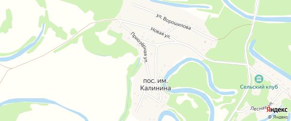 Приозерная улица на карте поселка им Калинина с номерами домов