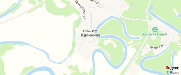 Улица Ворошилова на карте поселка им Калинина с номерами домов
