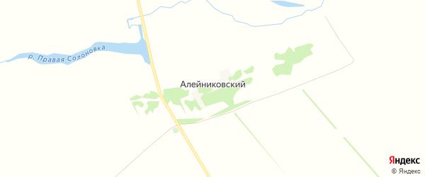 Карта Алейниковского поселка в Алтайском крае с улицами и номерами домов