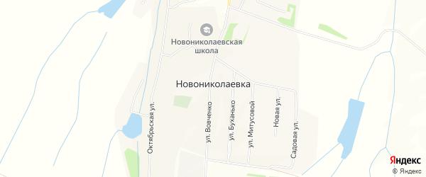 Карта села Новониколаевки в Алтайском крае с улицами и номерами домов