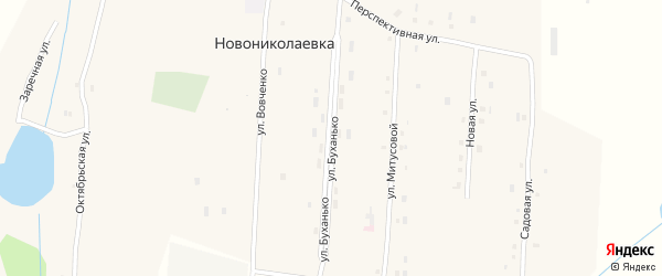 Улица Буханько на карте села Новониколаевки с номерами домов