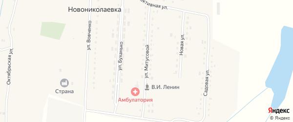 Улица Митусовой на карте села Новониколаевки с номерами домов