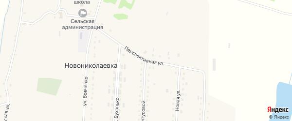 Перспективная улица на карте села Новониколаевки с номерами домов