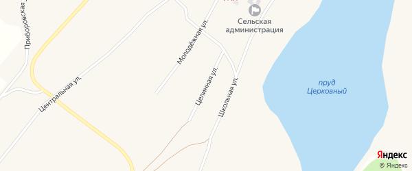 Целинная улица на карте Поломошного села с номерами домов
