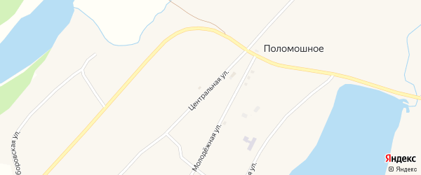 Центральная улица на карте Поломошного села с номерами домов