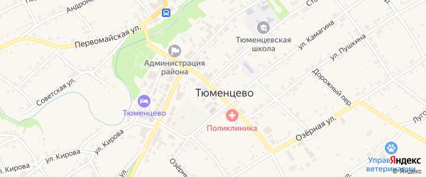Центральный переулок на карте села Тюменцево с номерами домов