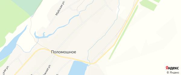 Карта Поломошного села в Алтайском крае с улицами и номерами домов