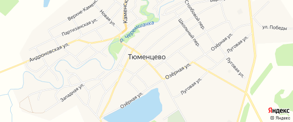 Карта села Тюменцево в Алтайском крае с улицами и номерами домов