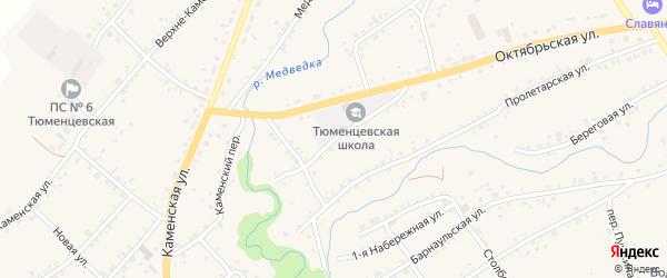 Большевистская улица на карте села Тюменцево с номерами домов