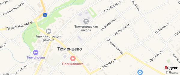 Улица Камагина на карте села Тюменцево с номерами домов
