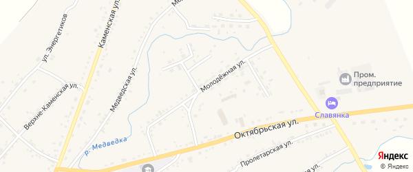 Молодёжная улица на карте села Тюменцево с номерами домов