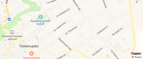 Улица Пушкина на карте села Тюменцево с номерами домов