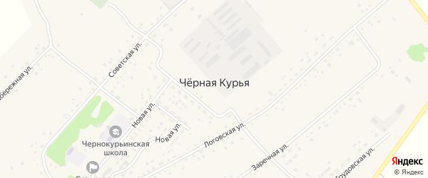 Трудовская улица на карте села Черной Курьи с номерами домов