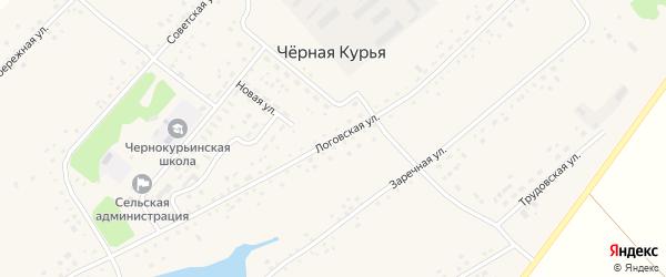 Логовская улица на карте села Черной Курьи с номерами домов