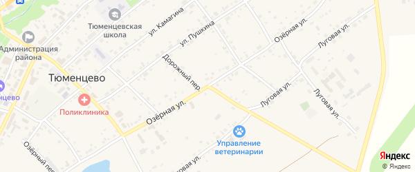 Дорожный переулок на карте села Тюменцево с номерами домов