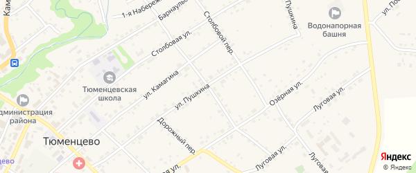 Школьный переулок на карте села Тюменцево с номерами домов