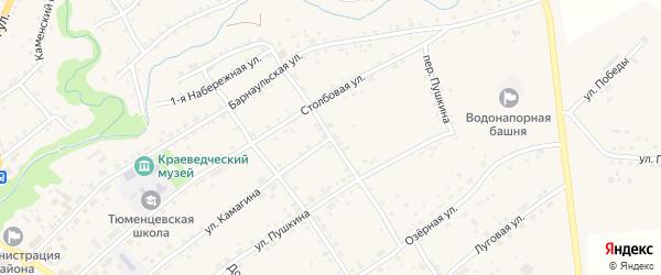 Столбовой переулок на карте села Тюменцево с номерами домов