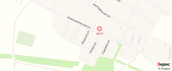 Мирная улица на карте села Георгиевки с номерами домов