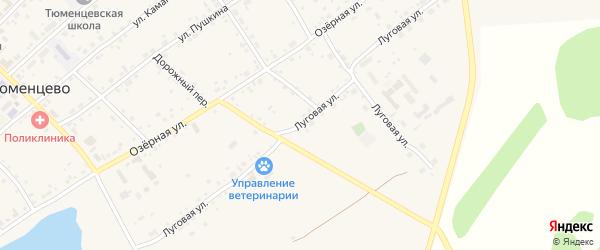 Луговая улица на карте села Тюменцево с номерами домов