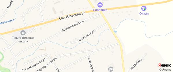 Береговая улица на карте села Тюменцево с номерами домов